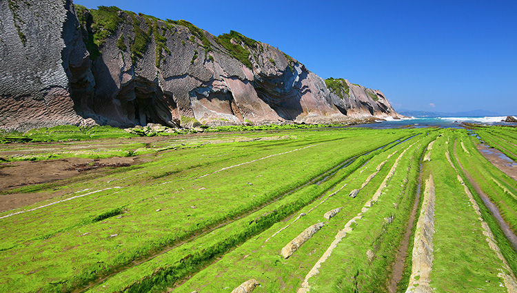 Colours of the Zumaia Flysch.